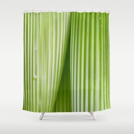 Costa Rican Foliage Shower Curtain