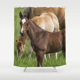 Waiting on a Friend, No. 1 Shower Curtain