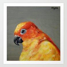 Peachy Parrot Art Print