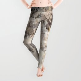 Grey seals(Halichoerus grypus) Leggings