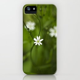 Chickweed Wildflowers iPhone Case