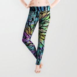 Rainbow Schools Pattern Leggings