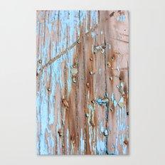 Turquoise Beach Wood II Canvas Print