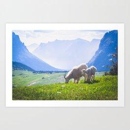 Goat Series, V Art Print
