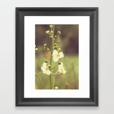 Little Flowers Framed Art Print
