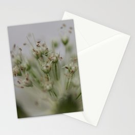 DreamTime Stationery Cards