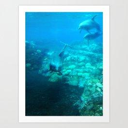 Under SeaWorld Art Print