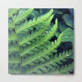 green fern abstract VII Metal Print