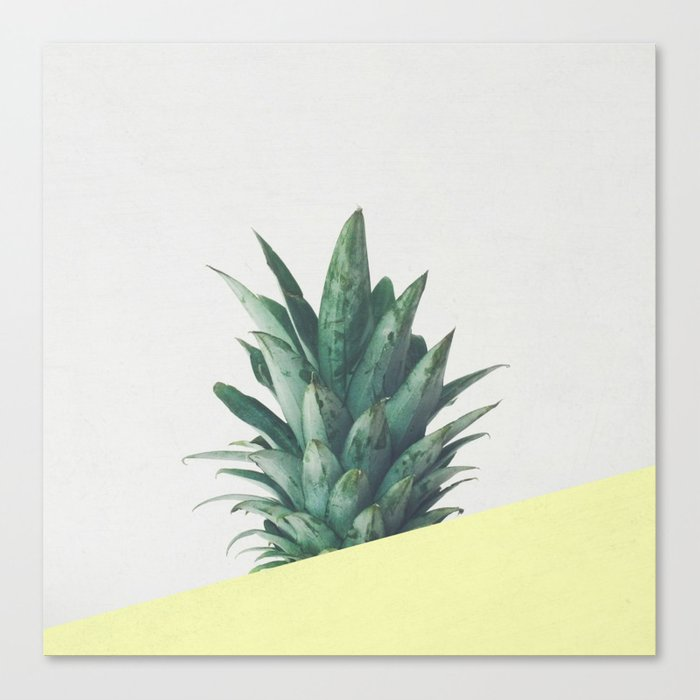 Pineapple Dip III Canvas Print