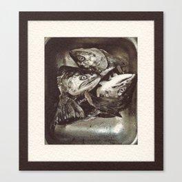 Salmon Heads Canvas Print