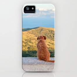 Lonely dog watching on Gibraltar iPhone Case
