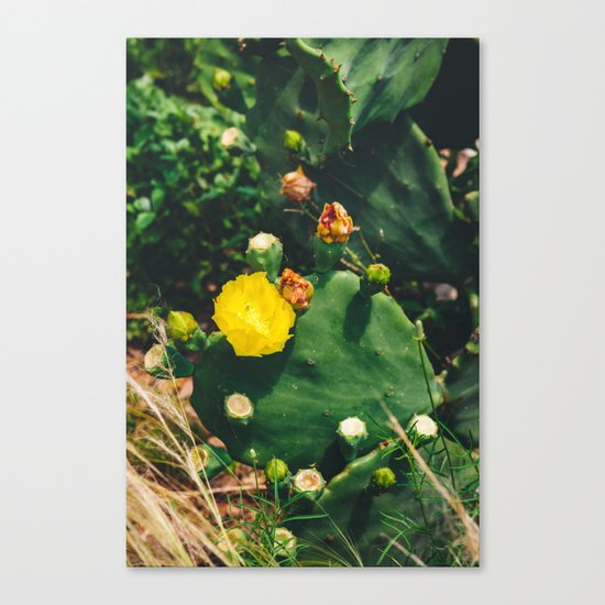 Gimme All Your Love Canvas Print