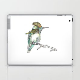 The Tufted Coquette Laptop & iPad Skin