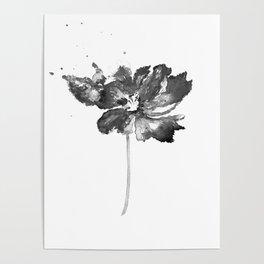 Flower, black and white Poster