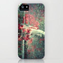 Evil cat iPhone Case