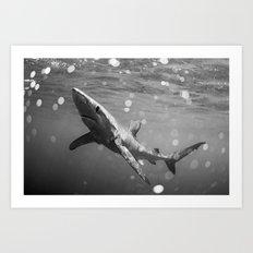 Blue Shark B&W Art Print