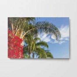 Bougainvillea Among the Palms Metal Print