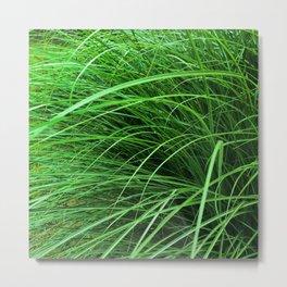 470 - Abstract Grass Design Metal Print