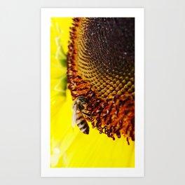 Busybee Art Print