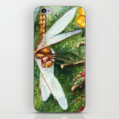 Amber Dragonfly iPhone & iPod Skin