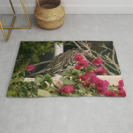 All Puffed Up Road Runner Rug