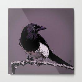 Morning Mr. Magpie :: Bird Art Print Metal Print