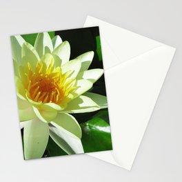 ninfea Stationery Cards