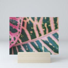 Pink and Peach Mini Art Print