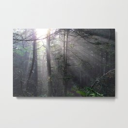Light Break Through-Landscape Metal Print