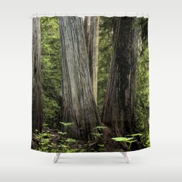 Nature Scene Shower Curtains