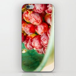 Red Grapes iPhone Skin