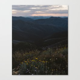 Mt Hotham Wildflowers Canvas Print