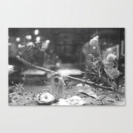 Picnic In the Dark Canvas Print