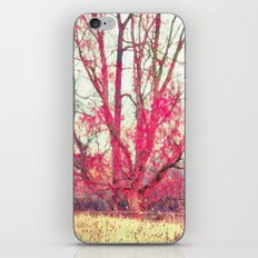 Ruby Winter iPhone Skin