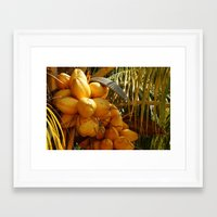 coconut wishes Framed Art Prints featuring Coconut by William Klein