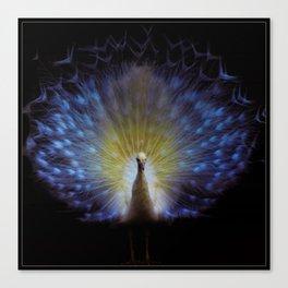 Majestic White Peacock ~ yo͞onəˌvərs Canvas Print