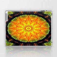 Citrus Slice Kaleidoscope Laptop & iPad Skin