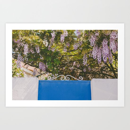 Wisteria backyard Art Print