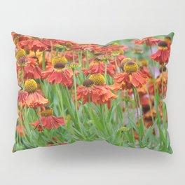 Lovely rudbeckia flower garden Pillow Sham