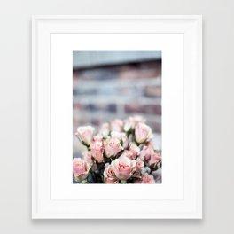 ROSES - PINK - PHOTOGRAPHY - FLOWERS Framed Art Print