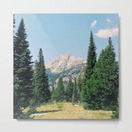 The Tetons, Wyoming 2013 Metal Print