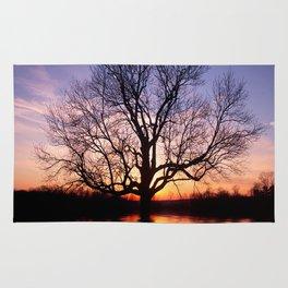 Sunset Silhouette Tree Rug