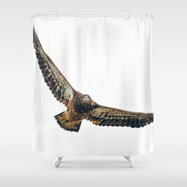 Young Bald Eagle in Breathtaking Flyby Shower Curtain