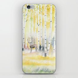 Birch Forest In The Morning iPhone Skin
