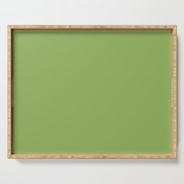 Color Green Serving Tray