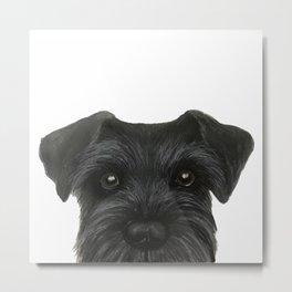 Schnauzer-black Dog illustration original painting print Metal Print