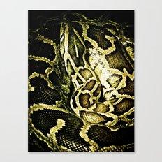 Ssssnake Canvas Print