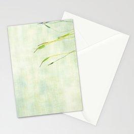 Colloquium Stationery Cards