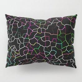 Spring Crackle Pillow Sham