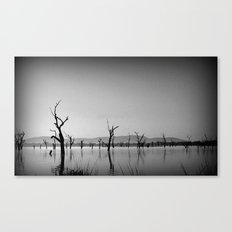 Sculptures in the Lake Canvas Print